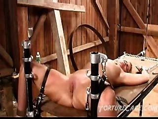 Whipping  Porn