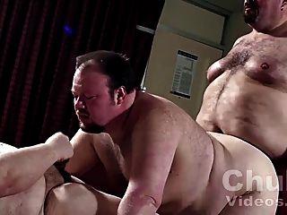 Three Chubby Bears