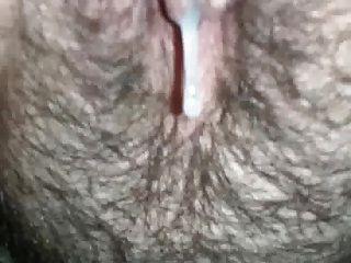 Hairy Creampie  Porn